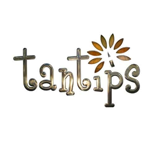 Gold metallic logo in a playful text, tantips, in lowercase. The icon above the 'p' is a pencil tip with leaves surrounding it in different bronze colours, which sum the product up in one simple logo design